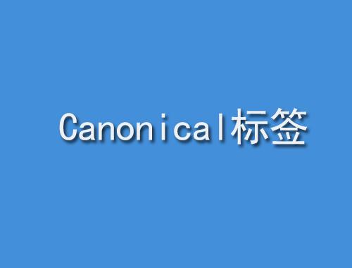 什么是Canonical标签,怎样使用呢?